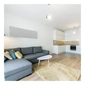 house to apartment moving